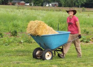Bree hauls straw for the garden for spreading around the plants in the spring.